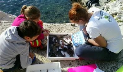 Mali Rapčani upoznali su svoje podmorske susjede i njihove probleme