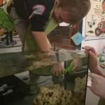 Priprema akvarija