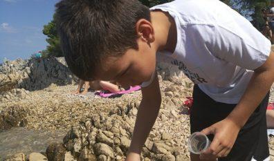 """Prijavite svog osnovnoškolca na radionicu """"AKTIV – obrazovanje djece za okoliš i prirodu u Općini Punat"""""""