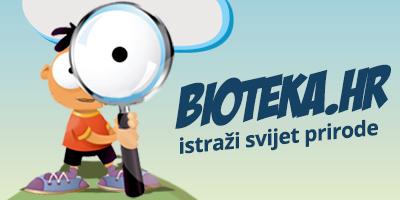BIOTEKA-hr-banner