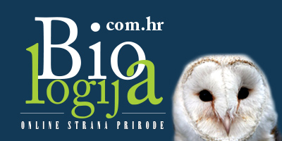 biologija-banner