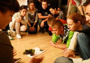 Eco-lifestyle in practice